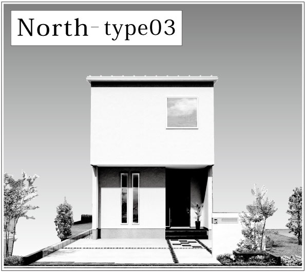 type03