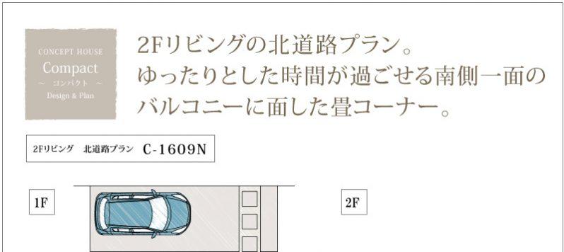 compact_c1609n eye